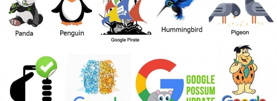 الگوریتم های گوگل  و کاربرد آنها